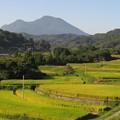 Photos: 鶴見岳7744
