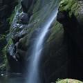 Photos: 由布川峡谷7732