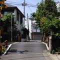 写真: 20110508_[秒速5センチメートル]参宮橋_013