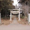 Photos: 【八百万】栃木市大平町新付近八坂神社