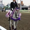 写真: 川崎競馬の誘導馬06月開催 あやめVer-120611-03-large