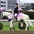 写真: 川崎競馬の誘導馬06月開催 あやめVer-120611-09-large