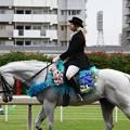写真: 川崎競馬の誘導馬06月開催 紫陽花Ver-120611-15-large