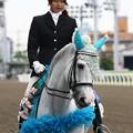 写真: 川崎競馬の誘導馬06月開催 紫陽花Ver-120611-16-large