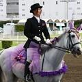 写真: 川崎競馬の誘導馬06月開催 あやめVer-120613-02-large