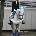 写真: 川崎競馬の誘導馬06月開催 紫陽花Ver-120613-01-large