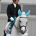 写真: 川崎競馬の誘導馬06月開催 紫陽花Ver-120613-02-large