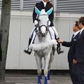 写真: 川崎競馬の誘導馬06月開催 初心者マークVer-120615-02-large