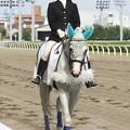 写真: 川崎競馬の誘導馬06月開催 初心者マークVer-120615-07-large