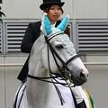 写真: 川崎競馬の誘導馬06月開催 初心者マークVer-120615-10-large