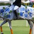 写真: 川崎競馬の誘導馬07月開催 七夕飾りVer-120702-05-large