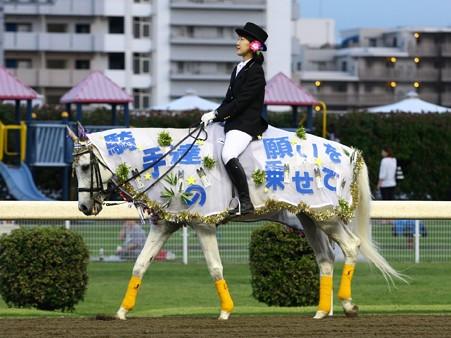川崎競馬の誘導馬07月開催 七夕飾りVer-120702-10