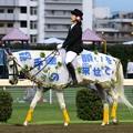 写真: 川崎競馬の誘導馬07月開催 七夕飾りVer-120702-10-large