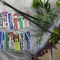写真: 川崎競馬の誘導馬07月開催 七夕飾りVer-120702-13-large