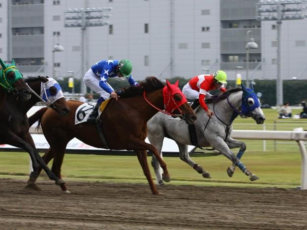 写真: 121105川崎03R富士通フロンテック賞 優勝パワーオブフロー