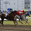 121105川崎03R富士通フロンテック賞 優勝パワーオブフロー
