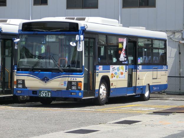 写真: 阪神バス-001
