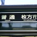 写真: 京阪6000系:普通 枚方市