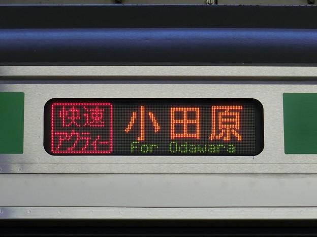 JR東日本E231系:快速アクティー 小田原