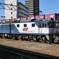 Photos: JR貨物:EF64形1000番台-01