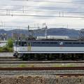 Photos: JR貨物:EF65形2000番台-01
