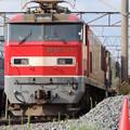 Photos: JR貨物:EF510形-03
