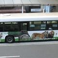 Photos: 東京都交通局-08