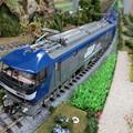 模型:JR貨物EF210形(138)-05