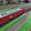 模型:JR貨物EF510形(8)-14