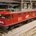 模型:JR貨物EF510形(8)-15