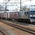 Photos: JR貨物:EF210形-01