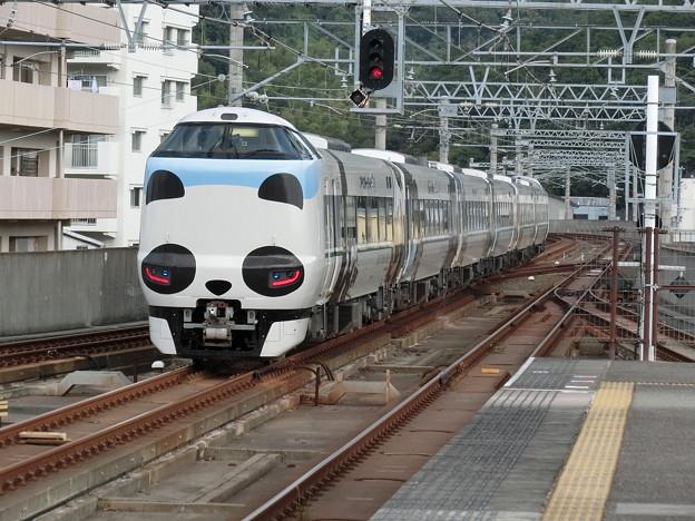 海南駅を出発してゆく特急『くろしお』パンダ列車。