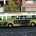 写真: 近江鉄道バス-18