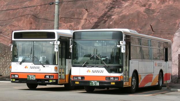 写真: 南海りんかんバス-08