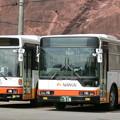 Photos: 南海りんかんバス-08