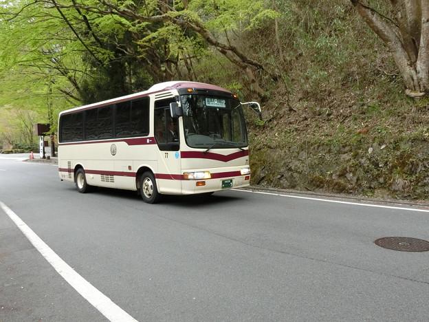 京都バス-08