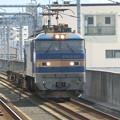 Photos: JR貨物:EF510形-08