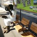 Photos: 一人分座れねー