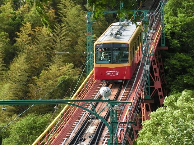 Photos: 新緑の中を駆け上がる男山ケーブル。