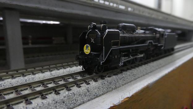 D51-200