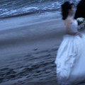 湘南の花嫁