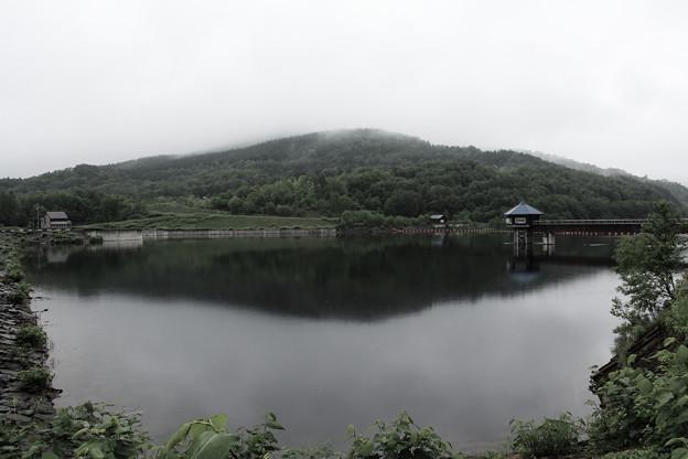 雨に寂しいペーパンダム