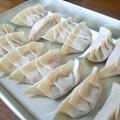 Photos: 手作り餃子…