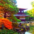 Photos: さっきと反対側からの銀閣寺...