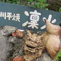 Photos: 凛火