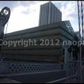 Photos: P3220024