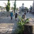 Photos: P3220113