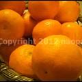 Photos: P3370197
