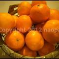 Photos: P3370198