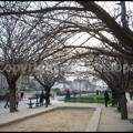 Photos: P3440529